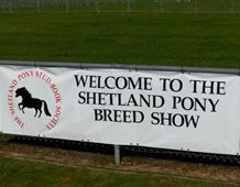 Breed Show 2019