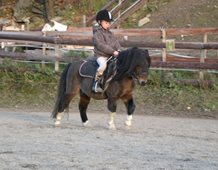 Melina, aged 9, having a riding lesson on Shetland stallion Chagall, Norway.