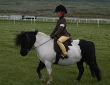 Eight year old Soffia Cynwyl riding Jeni (Earlswood Jules).