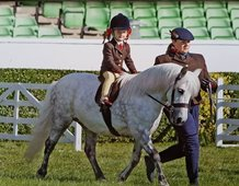 Imogen Davies riding Cranford Air Frost first time at Great Yorkshire Show for them both and they loved it.