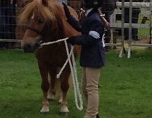 Kayleigh giving Mitch a well deserved pat at Turriff Show 2016