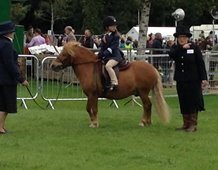 Listening to instructions from the judge at Turriff Show